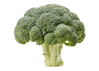Fresh Raw Green Broccoli