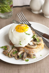 Egg and mushrooms on toast