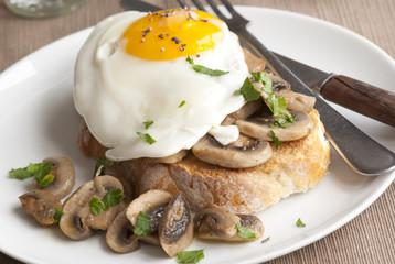 Egg and mushrooms on toast