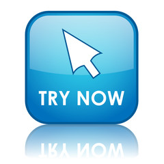 TRY NOW Web Button (free trial offers internet specials sale go)