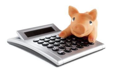calcul de cochon