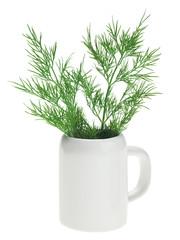 Fresh green dill bunch in small ceramic noggin