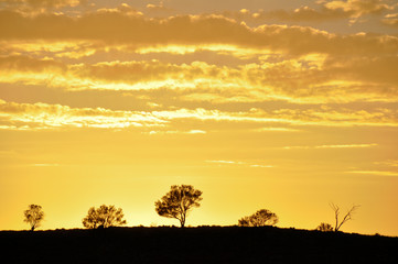 Sunrise at Flinders Ranges