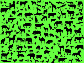 Big collection of different animals silhouettes - vector