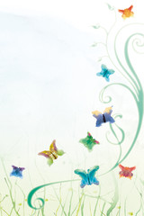 Schmetterling-Land