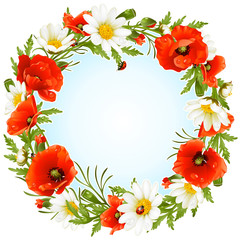 Vector camomile and poppy frame in the shape of circle