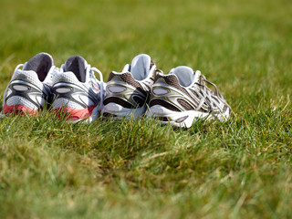 Two matched pairs of runners in the meadow