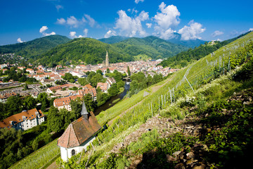 Fototapete - grand cru vineyard and Chapel of St. Urban, Thann,Alsace,France