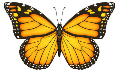Monarchfalter, Schmetterling, Monarch, Falter