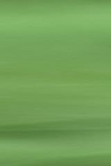 La feuille verte