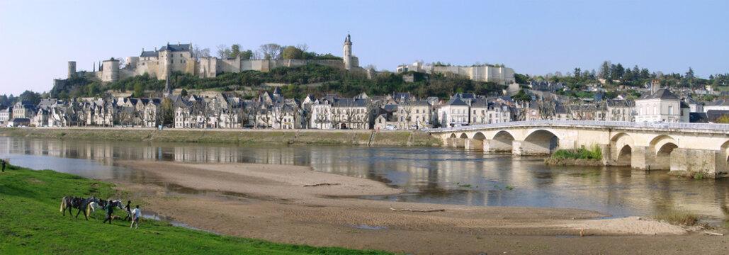 Vue d'ensemble de Chinon et son Château