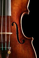 Violin - Cut out