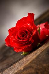 Rosa Rossa su Tavolo di Legno