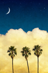 Wall Mural - Moon Palms with Vintage Paper Textures