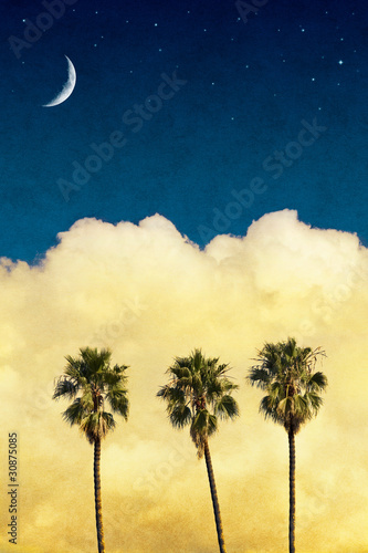 Wall mural Moon Palms with Vintage Paper Textures
