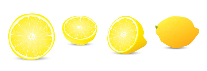 lemon illustration collection