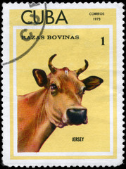 CUBA - CIRCA 1973 Jersey