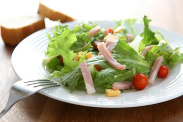 Ham and Cheese Salad