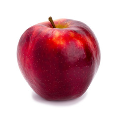 Ripe and juicy red apple a shank upwards isolated on a white