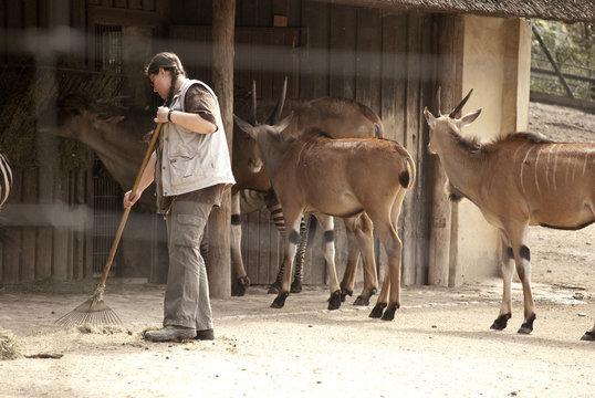 Tierpfleger / Tierplegerin