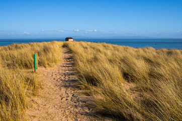 Path between the Sand Dunes