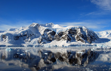Wall Mural - crystal clear reflection of antarctic landscape