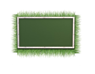 background of grass and frame