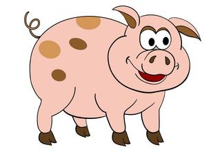 cartoon pig 2