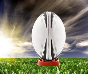Wall Mural - Rugby ball ready to be kicked on the field