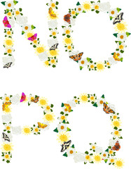 Alphabet of flowers and butterflies-N, O, P, Q.