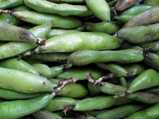 Papier Peint - fresh Green beans