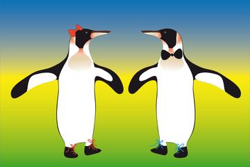 Pinguinenpaar Mann und Frau