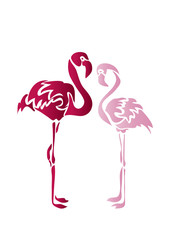 Фламинго/ flamingo