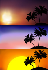 vector set of sunsets on a beach