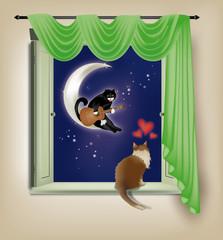 Printed kitchen splashbacks Cats serenata ... felina!