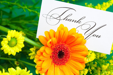 gerbera,yellow daisy and card signed thank you on green backgrou