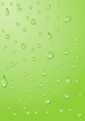 Drops of water on a green background