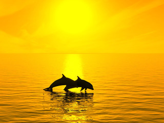 Photo sur Aluminium Dauphins Two dolphins floating in ocean on sunset.
