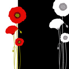 Abstract red poppy on black and white background