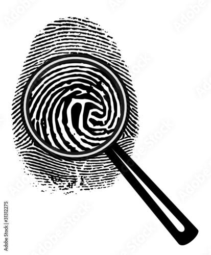 Fingerprint Glass