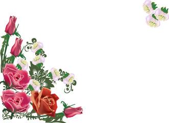 rose corner decoration on white