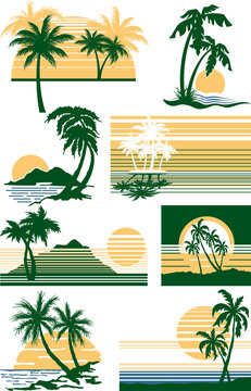 beaches with palm trees at sunset