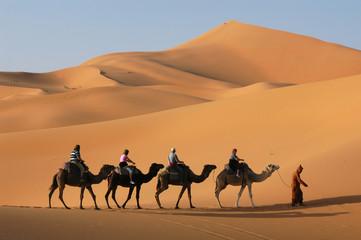 Fotorolgordijn Kameel Camel Caravan in Sahara Desert