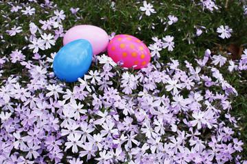 Easter eggs hidden in the yard