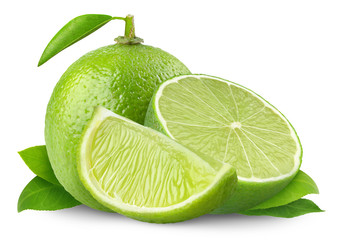 Isolated limes. Fresh cut lime fruits isolated on white background