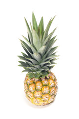 One pineapple fruit on white background
