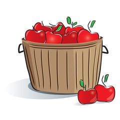 wooden bucket_apples