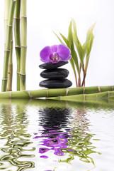 oasi di benessere