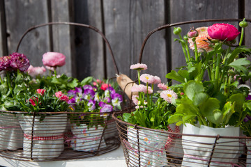 Spring flowers decoration
