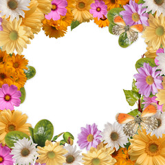Flower frame with space for copy or photo
